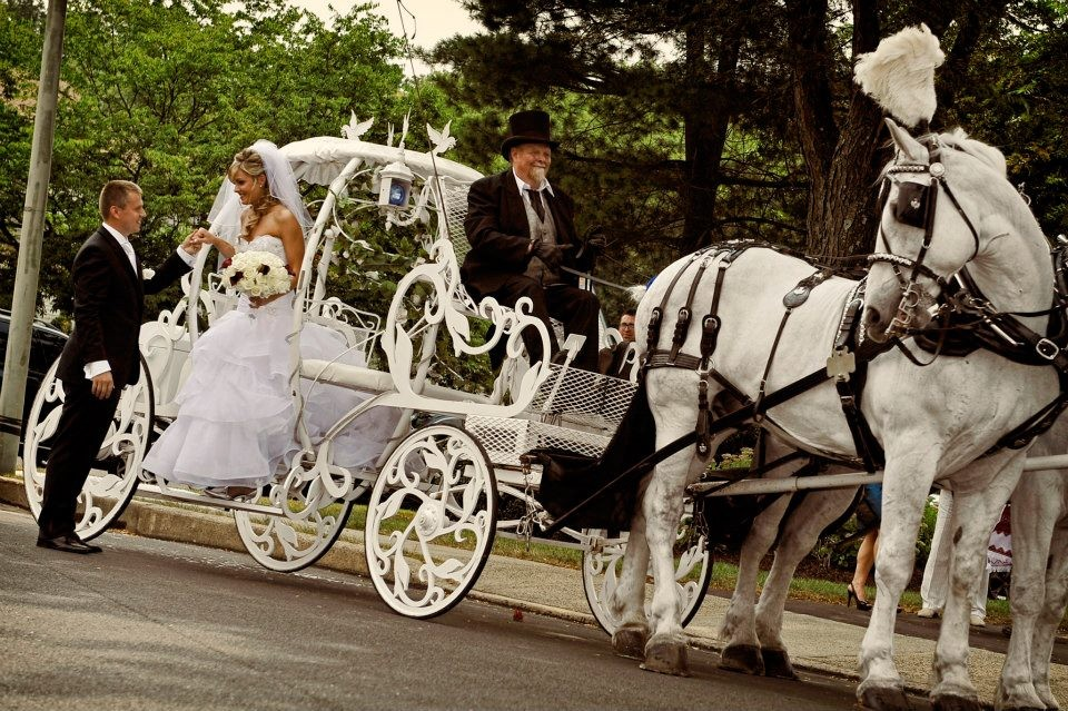 koets met paarden bruiloft